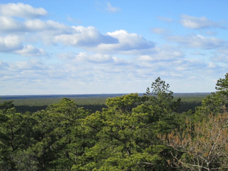 View from atop Apple Pie Hill tower.